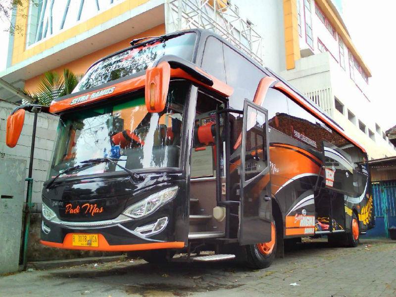 Sewa Bus Pariwisata Sidoarjo - Padi Mas