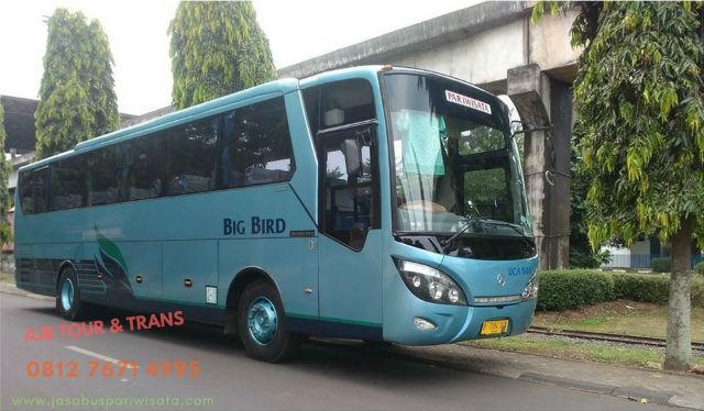 jasabuspariwisata-sewa-bus-drop-jemput-bandara-termurah-big-bird
