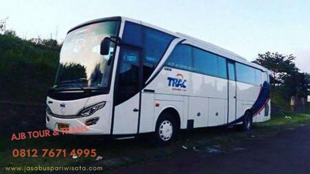 bus-pariwisata-jakarta-trac