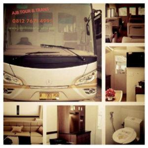 jasabuspariwisata-ulasan-lengkap-sewa-bus-premium-luxury-white-horse