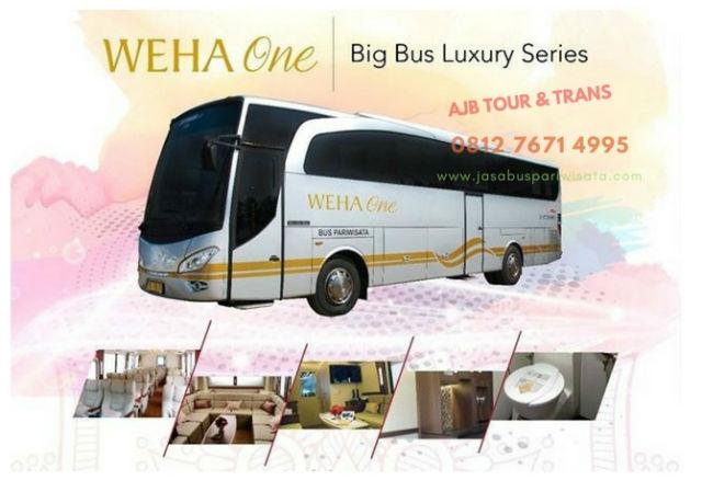Ulasan Lengkap Sewa Bus Premium/Luxury