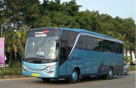 jasabuspariwisata-big-bus-3