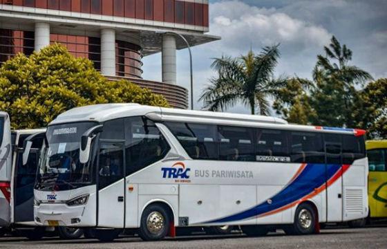 jasabuspariwisata-big-bus-6
