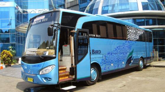 jasabuspariwisata-bus-premium-11