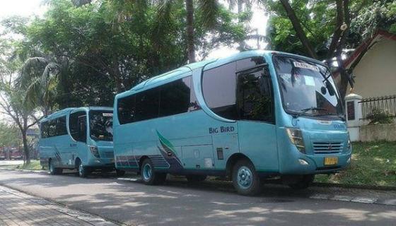 jasabuspariwisata-medium-bus-11