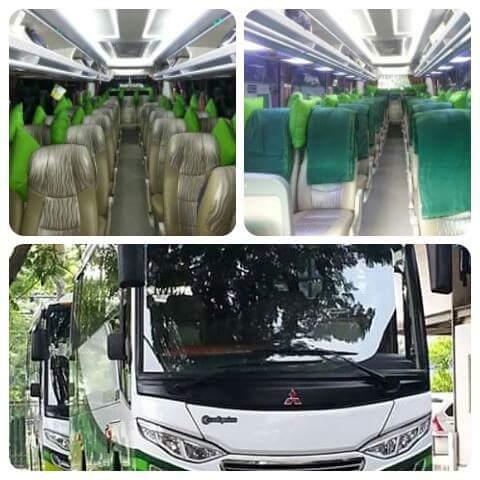 jasabuspariwisata-medium-bus-20