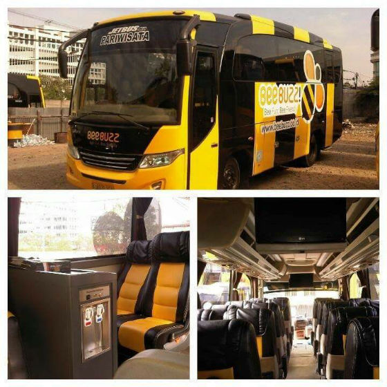 jasabuspariwisata-medium-bus-24