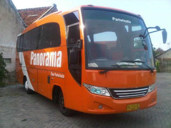jasabuspariwisata-medium-bus-3