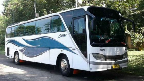 jasabuspariwisata-big-bus-bisnis