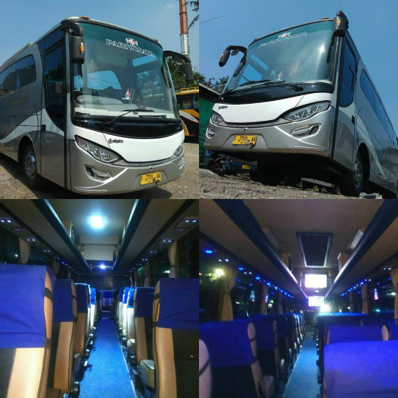 jasabuspariwisata-big-bus-bisnis-5