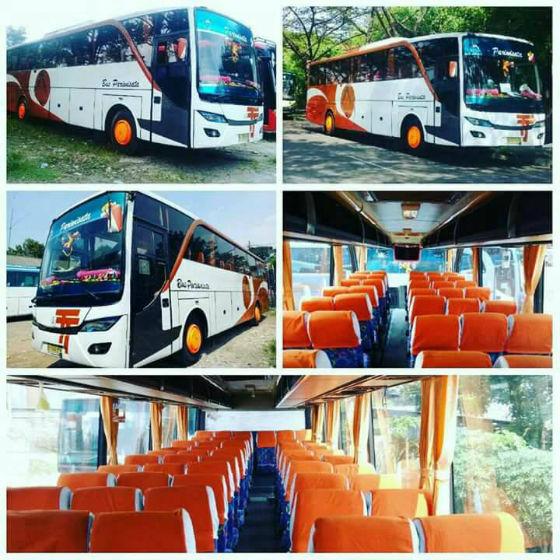 jasabuspariwisata-big-bus-bisnis-7