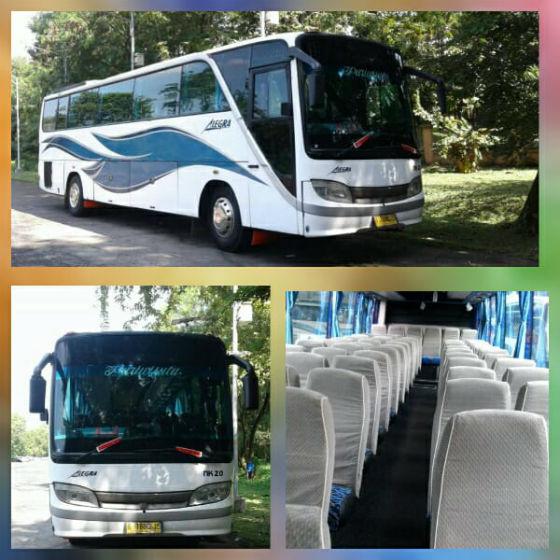 jasabuspariwisata-big-bus-bisnis-8
