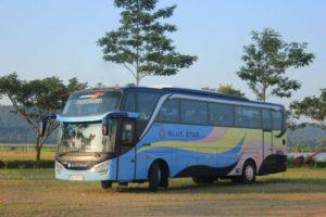 Alasan Memilih Blue Star sebagai Bus Perjalanan Anda