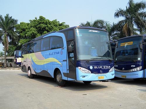 Semua kendaraan keluaran terbaru - Alasan Memilih Blue Star sebagai Bus Perjalanan Anda