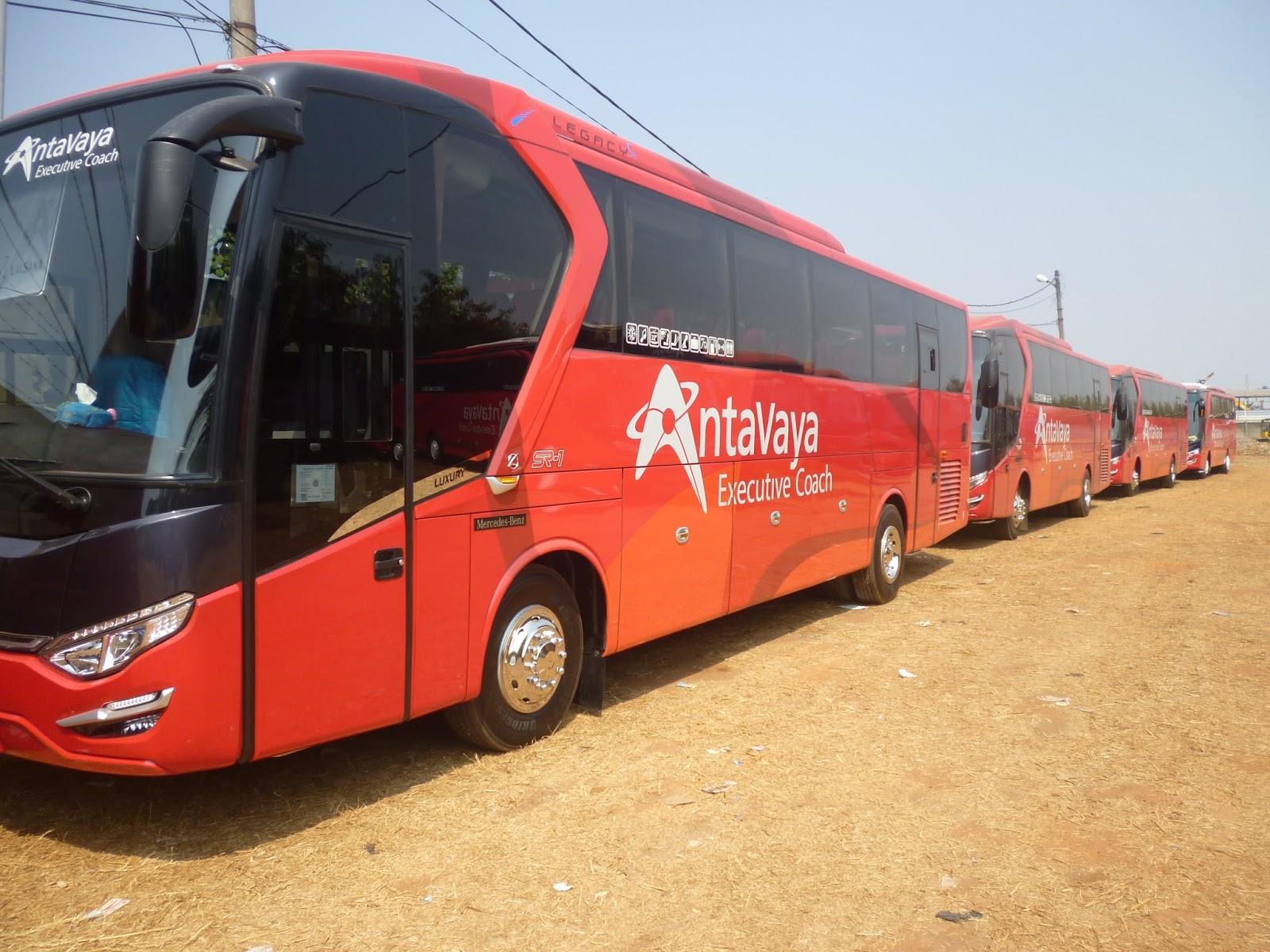 Antavaya - Mengenal Tipe dan Jenis Bus Pariwisata dari Berbagai Otobus di Indonesia