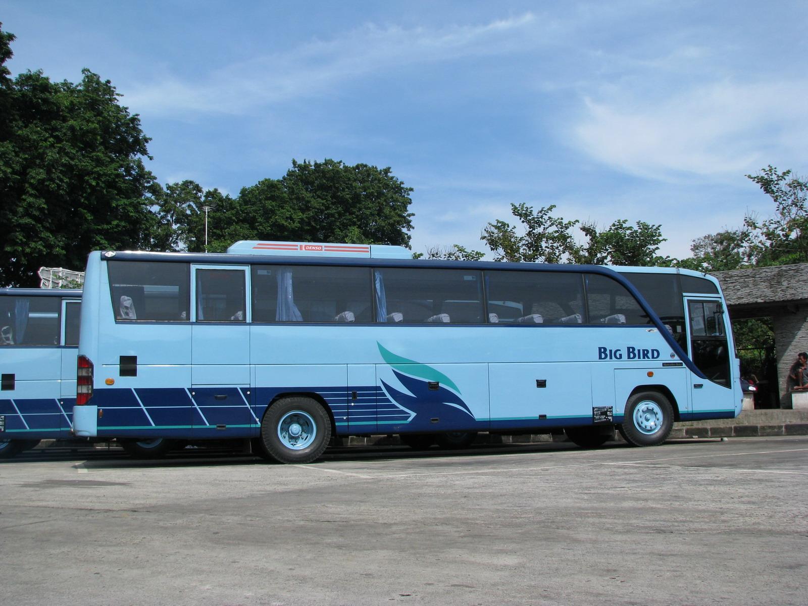 Big Bird - Mengenal Tipe dan Jenis Bus Pariwisata dari Berbagai Otobus di Indonesia
