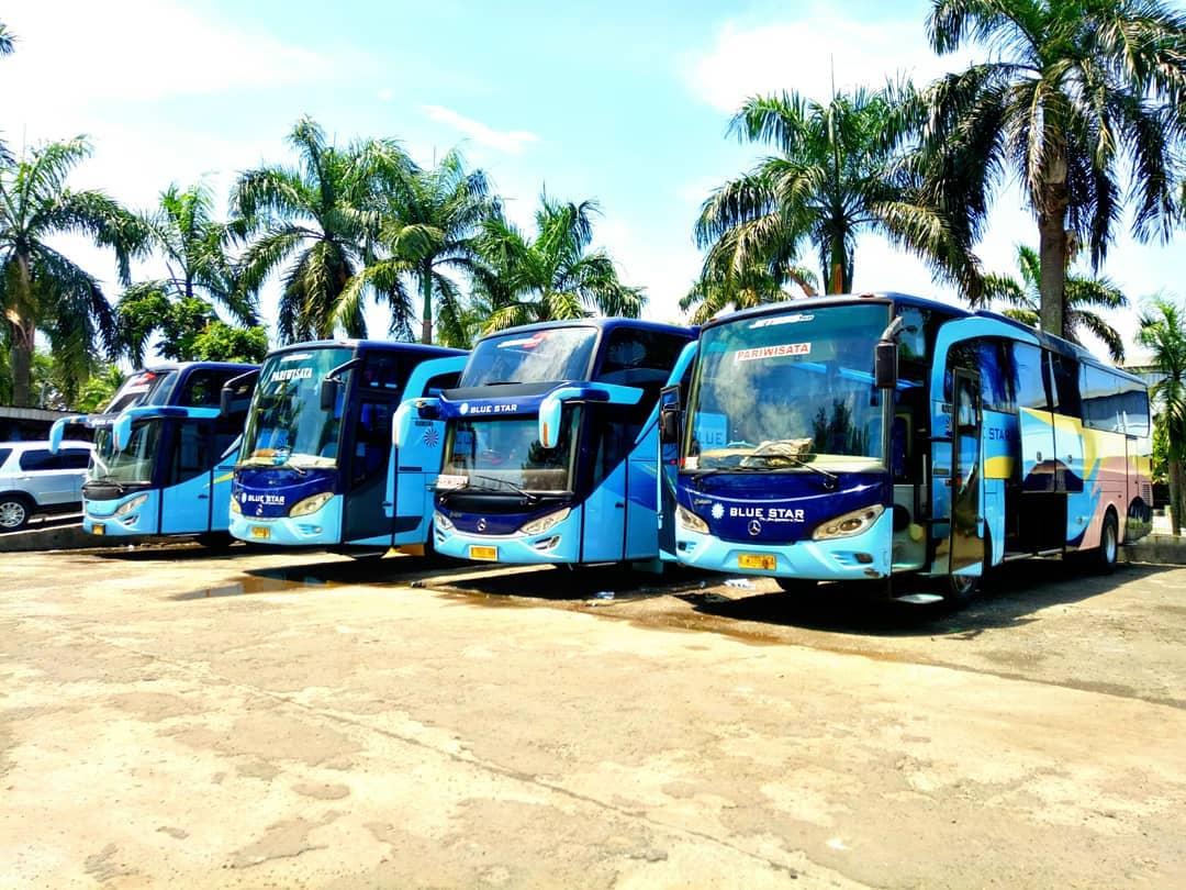 Mengapa harus menggunakan bus pariwisata Blue Star - Traveling Seru dengan Bus Pariwisata Blue Star