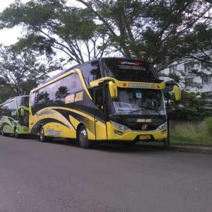 Bus Pariwisata Subur Jaya - Mengenal Tipe dan Jenis Bus Pariwisata dari Berbagai Otobus di Indonesia