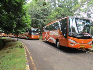 Panorama bus pariwisata - Rekomendasi Bus Pariwisata Jakarta untuk Perjalanan yang Aman dan Menyenangkan