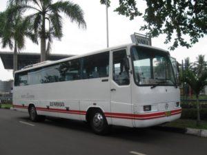 White Horse - Rekomendasi Bus Pariwisata Jakarta untuk Perjalanan yang Aman dan Menyenangkan