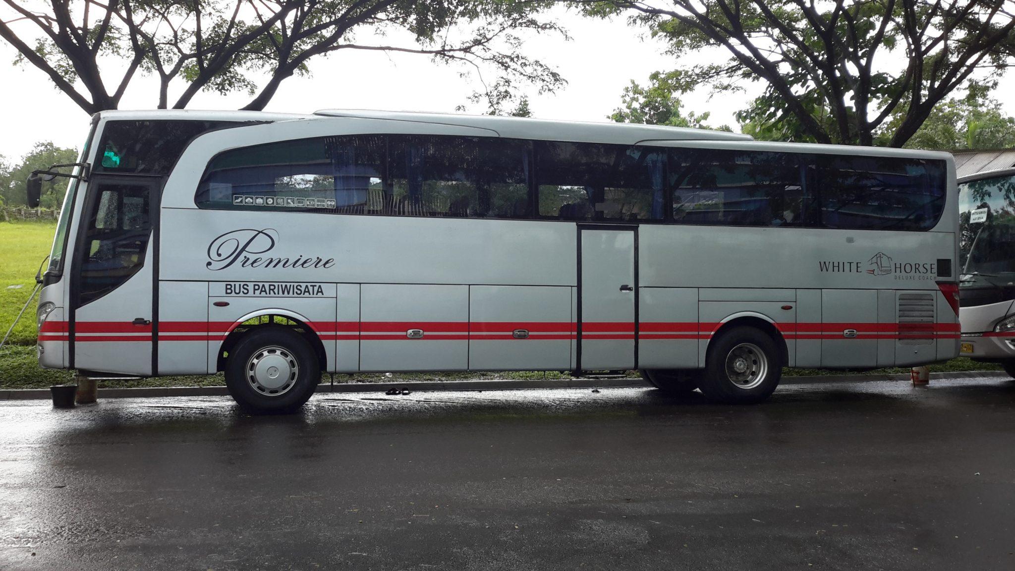 White Horse - Mengenal Tipe dan Jenis Bus Pariwisata dari Berbagai Otobus di Indonesia