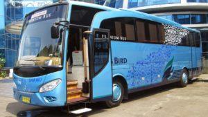 Sedang Merencanakan Liburan Bersama Rombongan? Intip Harga Sewa Bus Pariwisata dari AJB Tour & Trans Berikut