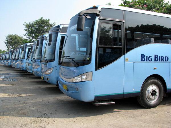 Pilihan ukuran bus beragam - Keuntungan Sewa Bus Blue Bird untuk Perjalanan Wisata Keluarga