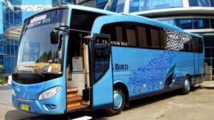Reputasi Blue Bird - Keuntungan Sewa Bus Blue Bird untuk Perjalanan Wisata Keluarga