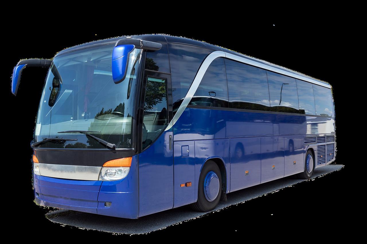 Jenis Bus - Cari Sewa Bus Pariwisata Murah? Di Sini Solusinya!