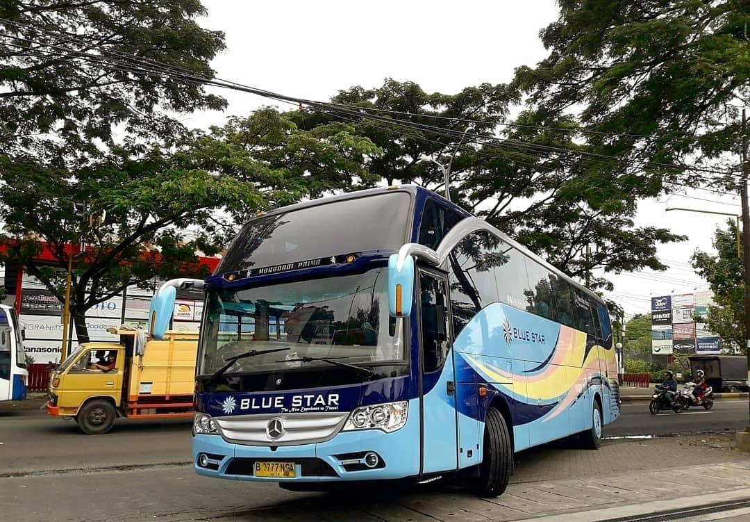 Tips Memilih Bus Premium - Tips Memilih Bus Premium dan Harga Bus Premium dari AJB Tour & Trans