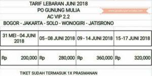 Harga Tiket Lebaran Bus Gunung Mulia 2018 - VIP Class