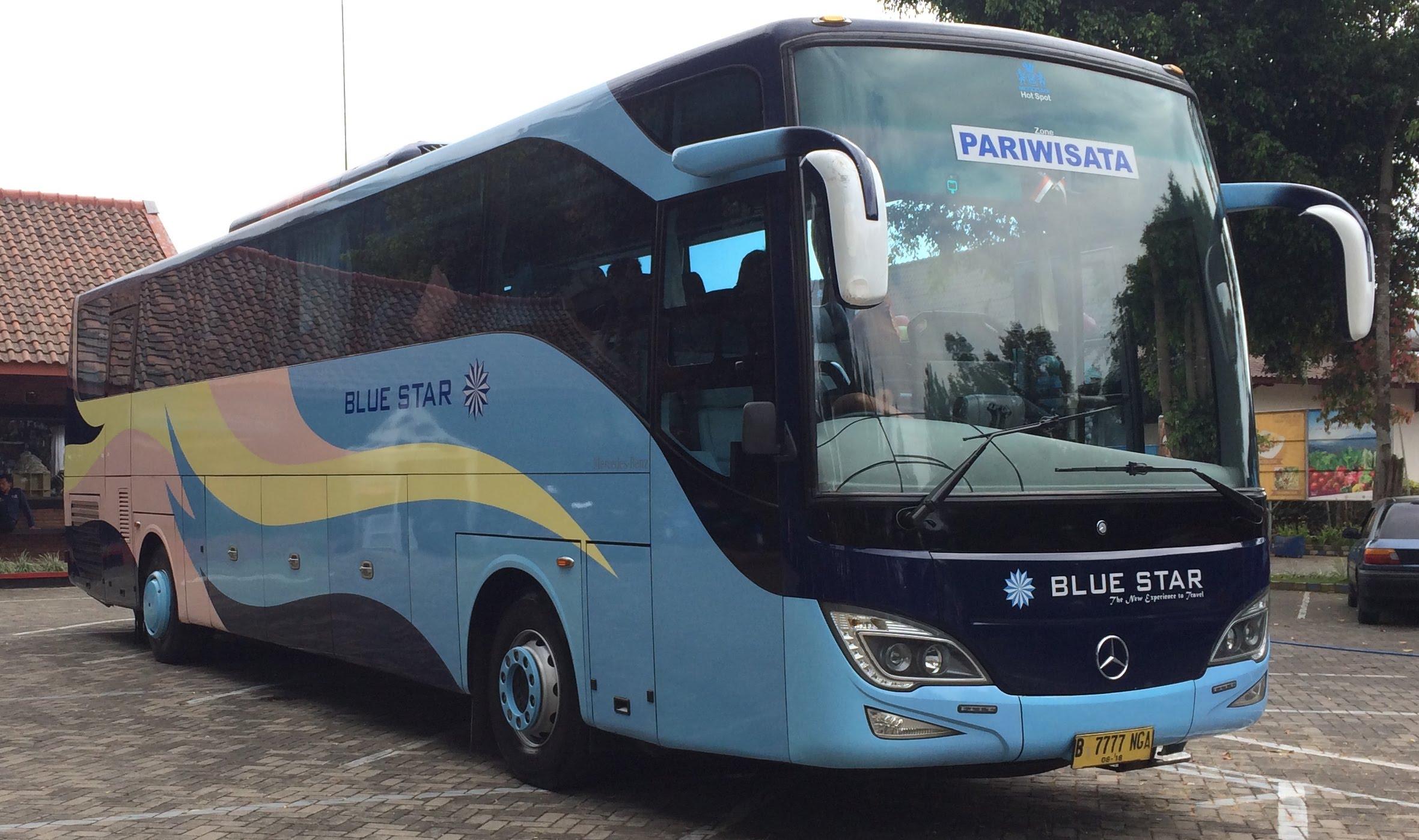 Jenis armada Blue Star - Traveling Seru dengan Bus Pariwisata Blue Star