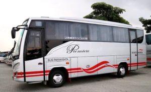 Luxurious bus Weha One dari White Horse - Ini 5 Bus Angkutan Umum Termewah di Indonesia
