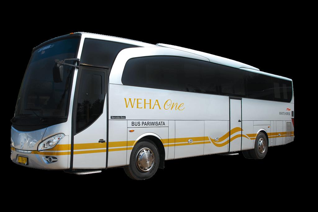 5 Alasan Mengapa Anda Harus Menyewa Weha One Bus Premium dari White Horse