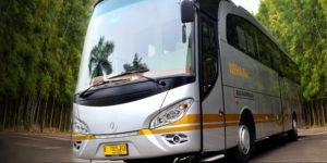 Desain Mewah - 5 Alasan Mengapa Anda Harus Menyewa Weha One Bus Premium dari White Horse