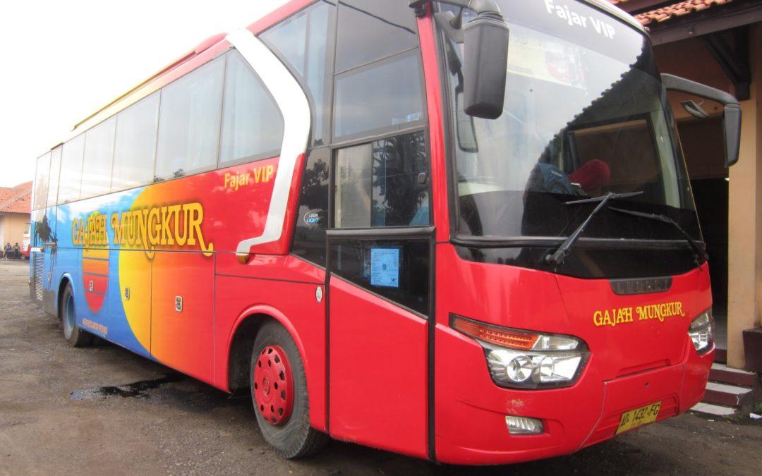 5 Keunggulan Bus VIP Ketimbang Bus Biasa