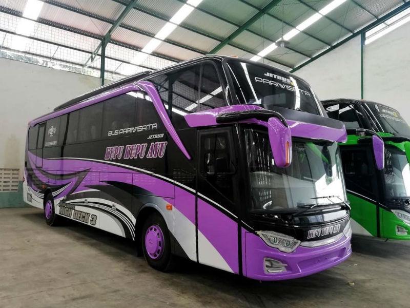 Bus Pariwisata Purwokerto - Bus Kupu Kupu Ayu
