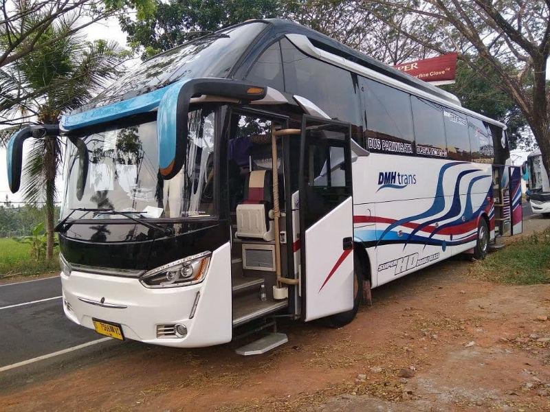 Sewa Bus - Bus DMH Trans