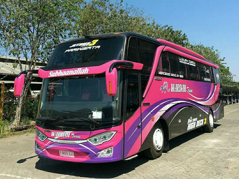 Bus WARDAH TRANS