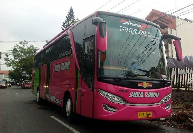 Sewa Bus Purwodadi - Bus Suka Damai