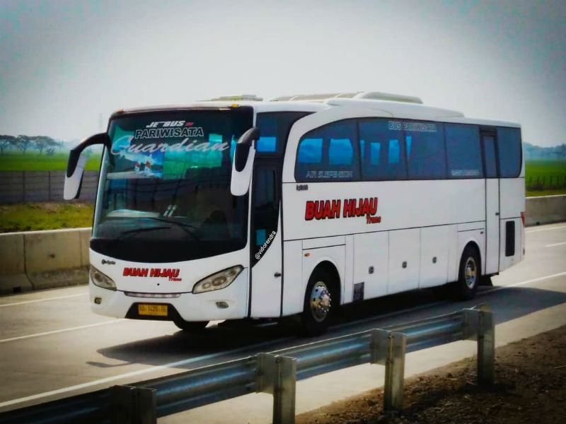Bus Buah Hijau Trans
