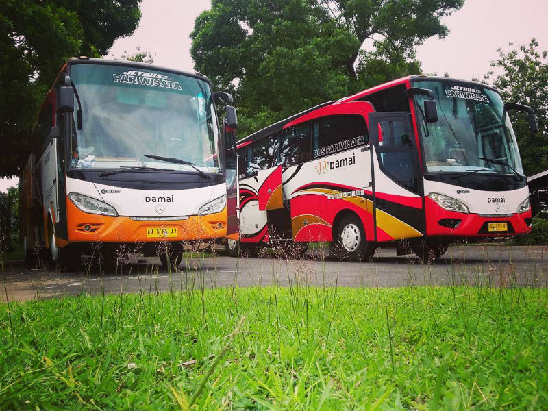 Bus Damai