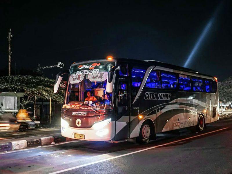 Bus Lamongan - Bus Citra Family