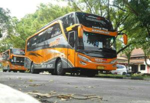 Bus Pariwisata Jember - Bus MAXI 77 TRANS