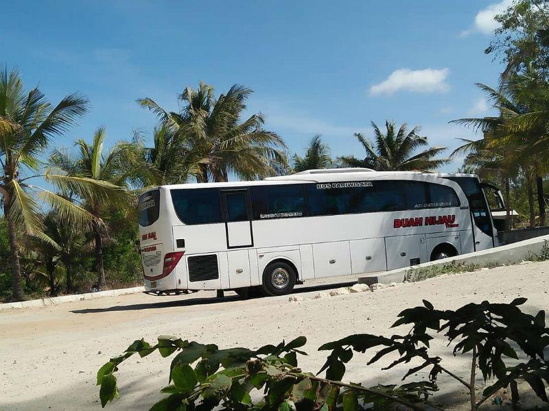 Bus Pariwisata Sragen - Bus Buah Hijau Trans