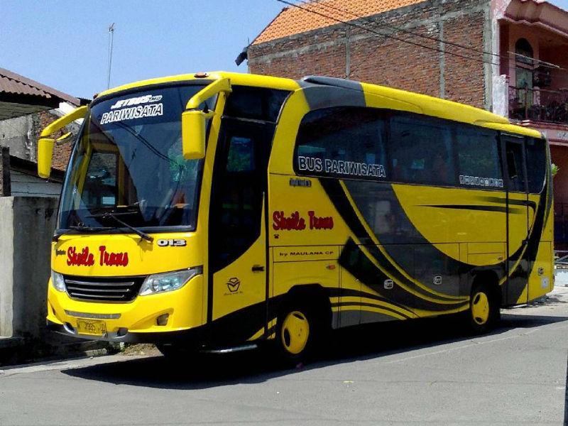Bus Sheila Trans