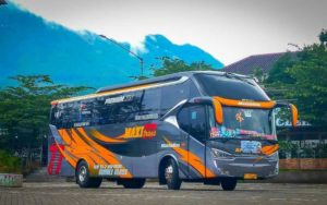 Sewa Bus Jember - Bus MAXI 77 TRANS