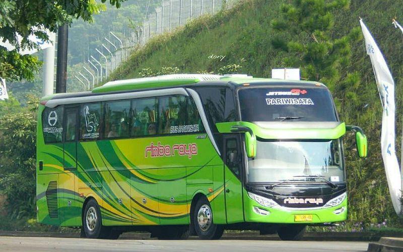 Sewa Bus Jepara - Bus Rimba Raya