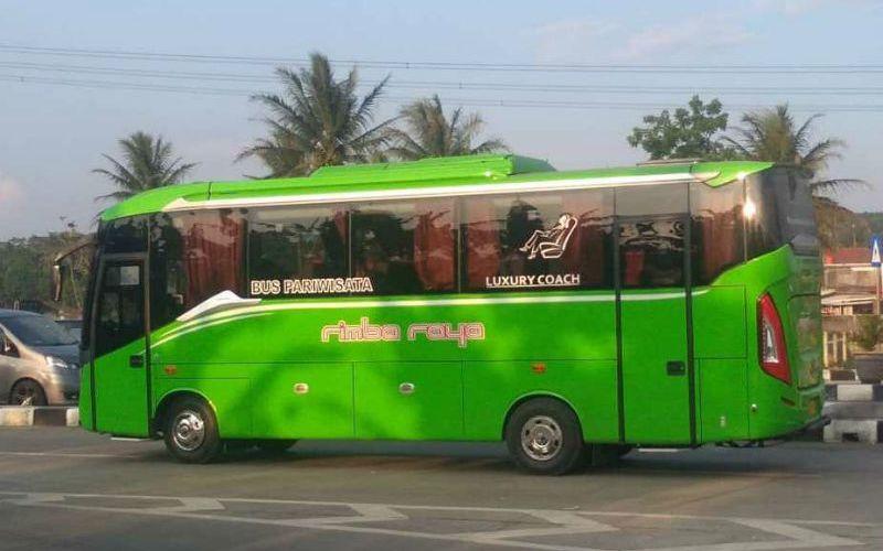 Sewa Bus Murah Jepara - Bus Rimba Raya