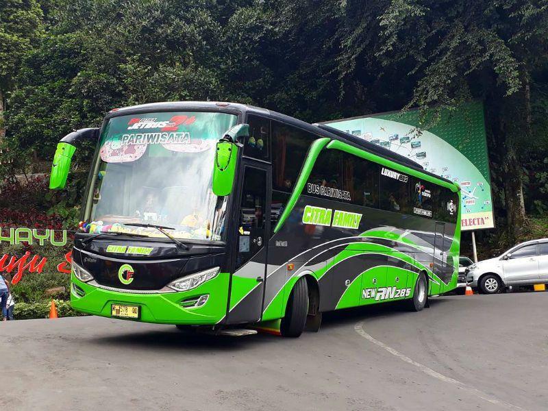 Sewa Bus Pariwisata Lamongan - Bus Citra Family